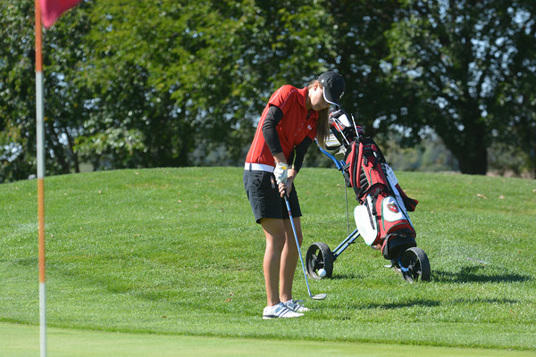 Effingham's Morgan Wilson chips her ball on to the eighth green at Meadowview Golf Course in Mattoon during the Class 1A Cumberland Regional.