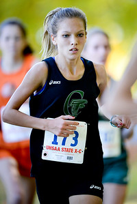 Dawnavyn Jeppson runs with consentration during the girl's 4a state cross country championships. At Sugarhouse Park in Salt Lake City. On October 23 2013. (Brian Wolfer Special to the Standard-Examiner)