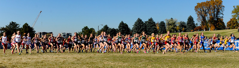Girls 5a cross country championships. At Sugarhouse Park in Salt Lake City. On October 23 2013. (Brian Wolfer Special to the Standard-Examiner)