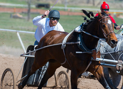 Rod Stewart gets his horse to go faster at the 2015 Cutter and Chariot Racing World Championships. At the Weber County Fair Grounds in Ogden on March 29, 2015