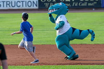 Ogden Raptors Vs Great Falls Voyagers At Lindquest Field in Ogden On July 18, 2014. (BRIAN WOLFER/Standard-Examiner)