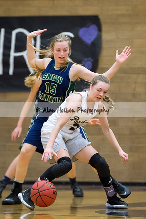 PineViewHS_20170126_1712