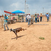 Shaie Williams for Working Ranch Magazine. Brayden Williams attempts a loop while Jamie Swartz caught some heals when the adults started a round robin in the goat pen at Oliver's 100th Anniversary Celebration Ranch Rodeo held at Range Riders Arena in Amarillo, TX on July 22, 2017.