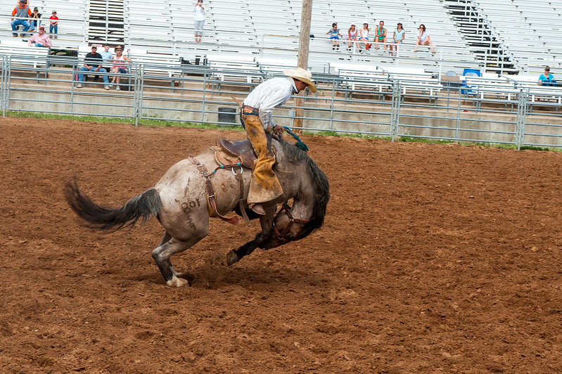 Shaie Williams for Oliver's 100th Anniversary Celebration Ranch Rodeo held at Range Riders Arena in Amarillo, TX on July 22, 2017.