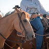 Oliver Saddle Shop 3 in 1 Ranch Rodeo