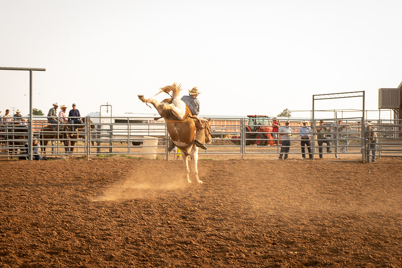 Tanner Hart wins the ranch bronc riding with a score of 74. Taken at Oliver Saddle Shop Ranch Rodeo held at Range Riders in Amarillo, TX on July 28, 2018. [Shaie Williams for Amarillo Globe News]