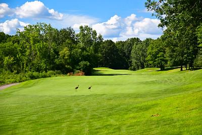Olivet Golf Outing-80