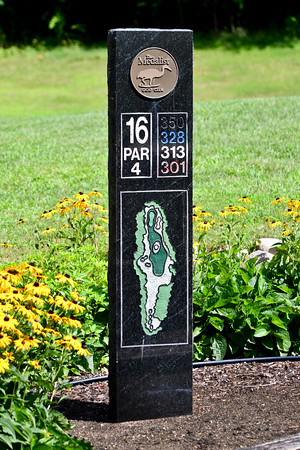 Olivet Golf Outing-51