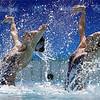 APTOPIX Rio Olympics Synchronized Swimming