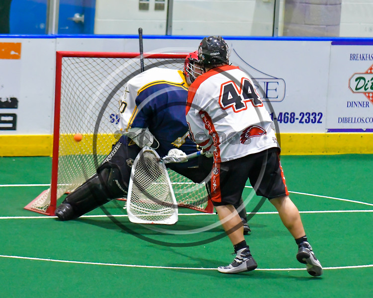 Onondaga Redhawks Brian Phillips Jr. (44) scores on the Allegany Arrows in Can-Am Box Lacrosse action at the Onondaga Nation Arena near Nedrow, New York on Saturday, May 14, 2016.  Onondaga won 17-5.