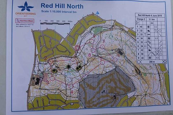 6 June 2018 Red Hill bush O