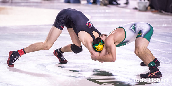 WIAA State Wrestling Championships-90