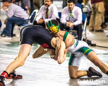 WIAA State Wrestling Championships-52
