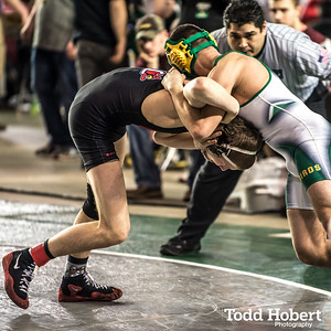 WIAA State Wrestling Championships-53