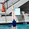 20170209_METROS_Diving_Girls-1