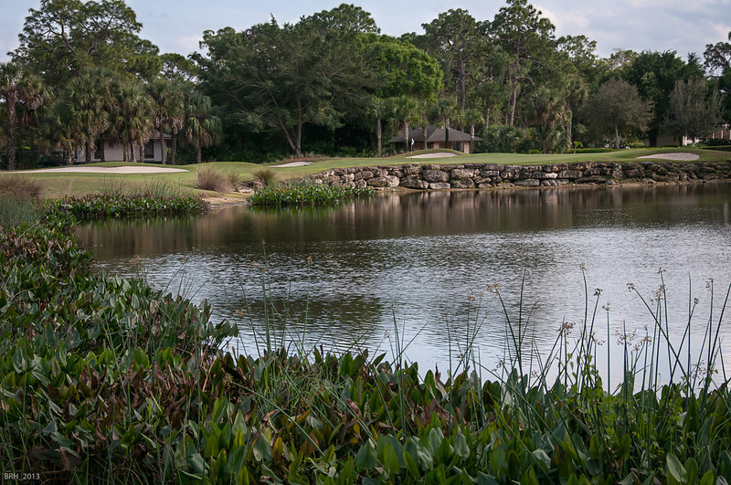Par 5 14th at the Bear Forest Country Club  Jan 2013
