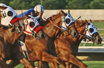 Late afternoon sunlight provides a warm glow during quarter horse racing action at Sam Houston Race Park July 3, 2005.