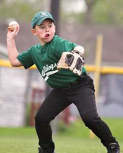 Boling Little League - 2012 Bulldogs