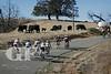 Levi Leipheimer's King Range Grand Fondo 2010 - Santa Rosa - Sonoma - California - Photographer: Michael Romo/Velophotos ©2010Levi Leipheimer's King Range Gran Fondo 2010 - Santa Rosa - Sonoma - California - Photographer: Michael Romo/Velophotos ©2010