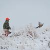 20111118 Pheasant Hunt 16