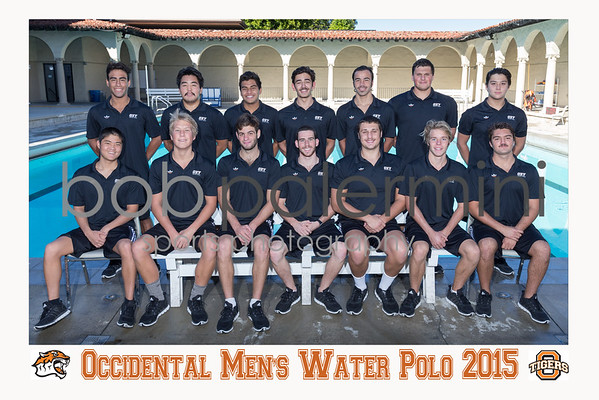 MWP 2015 Team with Text 2