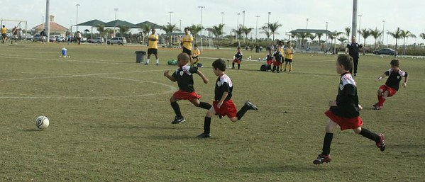 PAL Soccer 2008 SHARKS