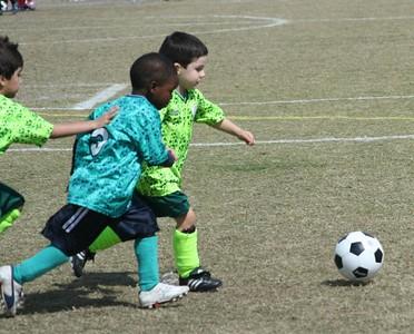 PAL soccer The Chameleons