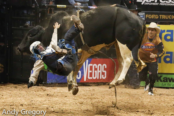 PBR World Finals 2012