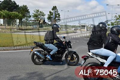 ALF 75045
