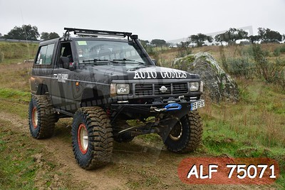 ALF 75071