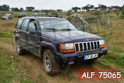 ALF 75065