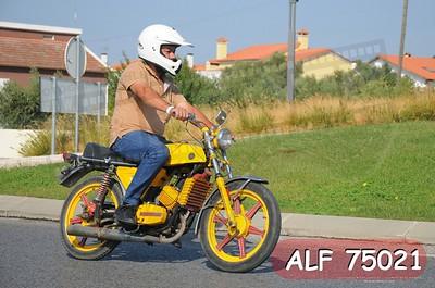 ALF 75021