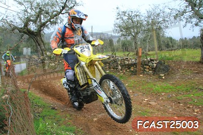 FCAST25003