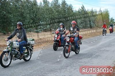 RUI530010