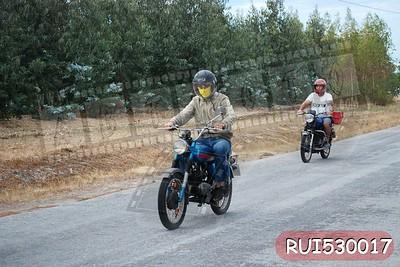 RUI530017