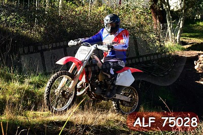 ALF 75028