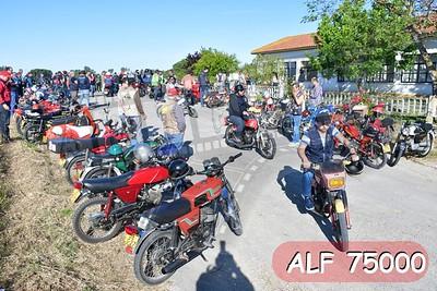 ALF 75000