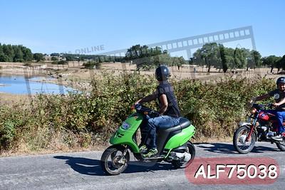 ALF75038