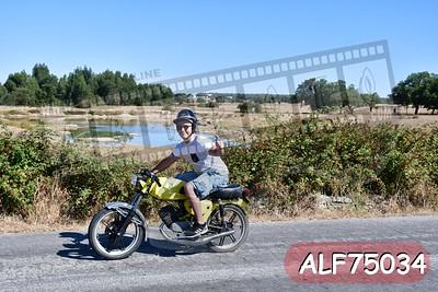 ALF75034