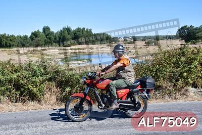 ALF75049