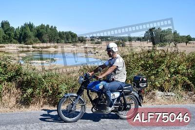 ALF75046