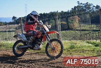 ALF 75015