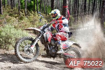 ALF 75022