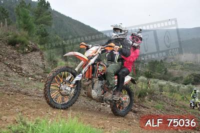 ALF 75036