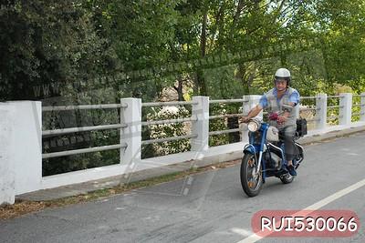 RUI530066