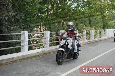 RUI530068