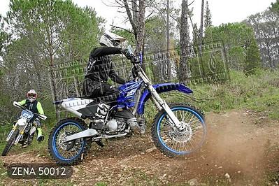 ZENA 50012