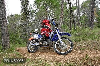 ZENA 50038