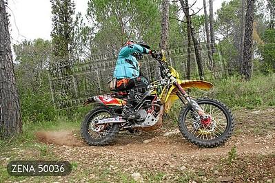 ZENA 50036
