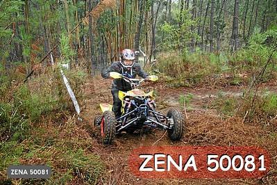 ZENA 50081